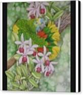 Amazon 3 Canvas Print