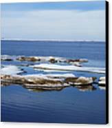 Arctic Ice Canvas Print