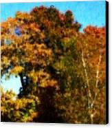 Autumn Leaves Canvas Print by David Lane