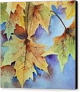 Autumn Splendor Canvas Print by Bobbi Price