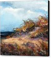Beach Dune 2 Canvas Print by Peter R Davidson