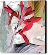 Bird Of Paradise 5 Canvas Print