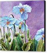 Blue Poppies Canvas Print by Bobbi Price