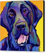 Buddy Canvas Print by Pat Saunders-White