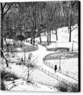 Central Park 6 Canvas Print by Wayne Gill
