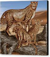 Cheetah Family Tree Canvas Print
