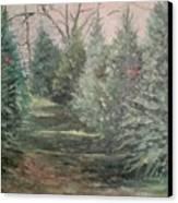 Christmas Tree Lot Canvas Print by Rosemary Kavanagh