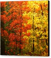 Colors Of Autumn II Canvas Print