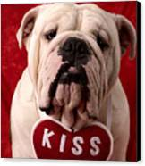 English Bulldog Canvas Print by Garry Gay