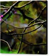 First Sign Of Spring Canvas Print by Gerlinde Keating - Galleria GK Keating Associates Inc