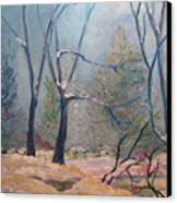 Forest At Twilight Canvas Print