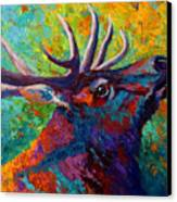 Forest Echo - Bull Elk Canvas Print by Marion Rose