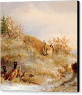 Fox And Pheasants In Winter Canvas Print by Anonymous