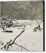 Frozen Fallen Canvas Print