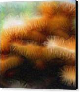 Fungus Tendrils Canvas Print by Ron Bissett