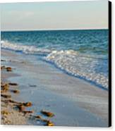 Gulf Of Mexico Beach Canvas Print by Steven Scott