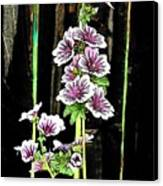 Hollyhocks Canvas Print