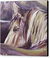 Horse World Detail Canvas Print
