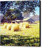Jenny Rays Farm Canvas Print