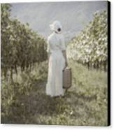 Lady In Vineyard Canvas Print by Joana Kruse