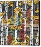 Manitoba Birch  Canvas Print by Lynn Huttinga