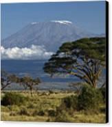 Mount Kilimanjaro Canvas Print by Michele Burgess
