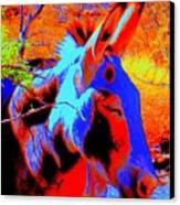 Oatman Burro Canvas Print