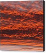 Rosy Sky Canvas Print