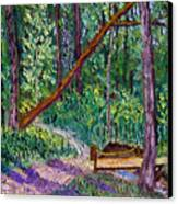 Sewp Trail Bridge Canvas Print