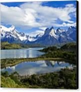 Springtime In Patagonia Canvas Print