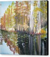 Swamp Reflection Canvas Print
