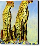 Two Cheetahs Canvas Print