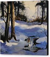 Winter Shadows Canvas Print