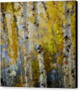Yellow Aspens Canvas Print by Marilyn Sholin