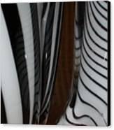 Zebra Glass Canvas Print