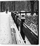 Central Park 8 Canvas Print
