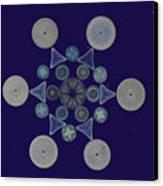 Diatom Arrangement Canvas Print