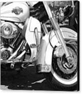 White Harley Davidson Bw Canvas Print