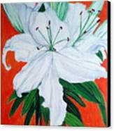 Lily On Red Canvas Print