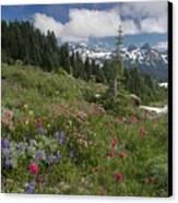 Mountain Meadow Canvas Print by Bob Gibbons
