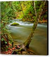 Whatcom Creek Canvas Print by Idaho Scenic Images Linda Lantzy