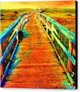 2355z  Wooden  Walkway Canvas Print