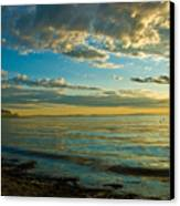 Birch Bay Canvas Print