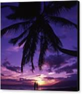 Palm Over The Beach Canvas Print