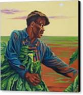 3rd Pickins Canvas Print