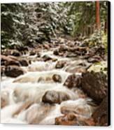 Autumn At Gore Creek - Vail Colorado Canvas Print by Brian Harig