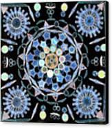Diatoms Canvas Print by M I Walker