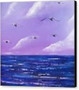 7 Seabirds Canvas Print