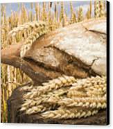 Bread And Wheat Cereal Crops. Canvas Print