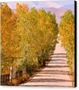 A Colorful Country Road Rocky Mountain Autumn View  Canvas Print by James BO  Insogna